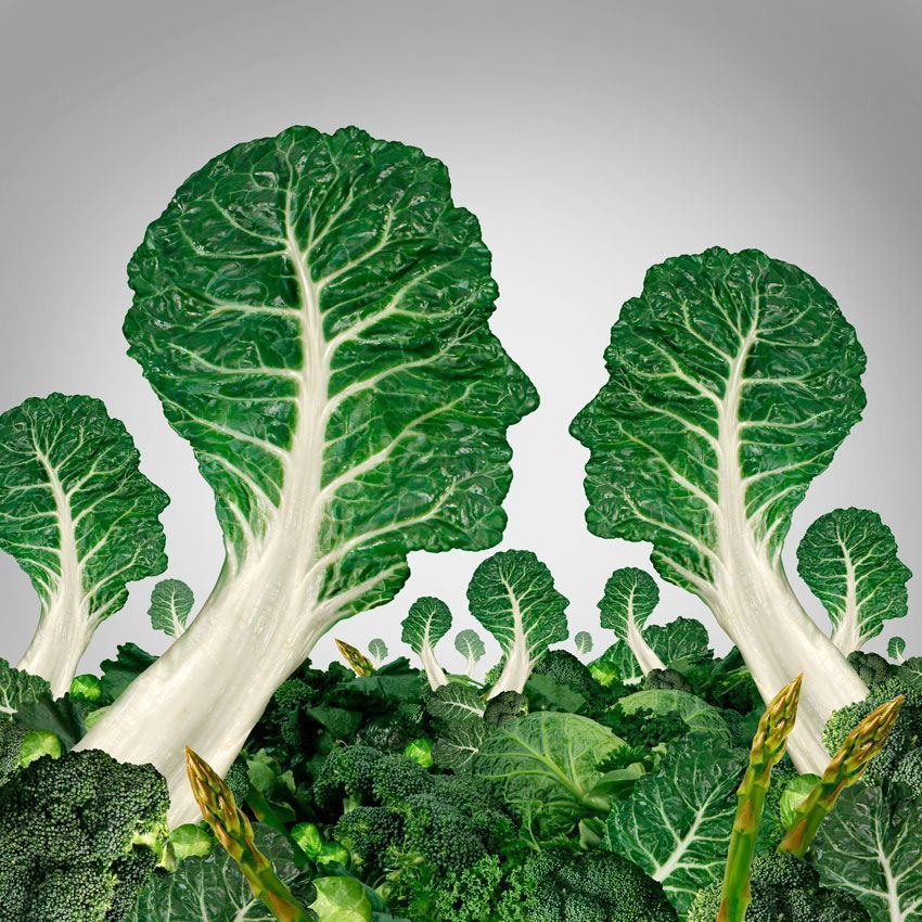 importancia alimentos ecológicos