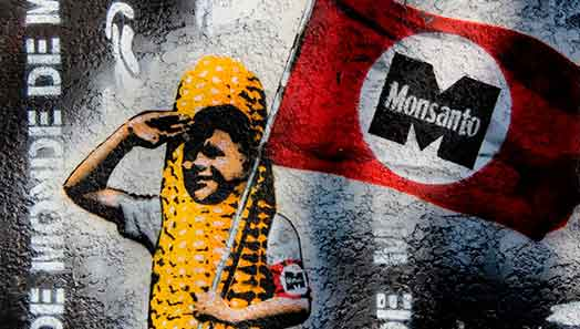 Monsanto glifosato propaganda Carey Gillam