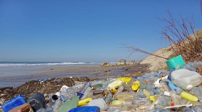 Residuos plásticos mares, plásticos oceanos, contmainación oceanos, día mundial oceanos residus plàstics