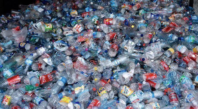 Reciclaje de envases España Reciclatge d'envasos Espanya