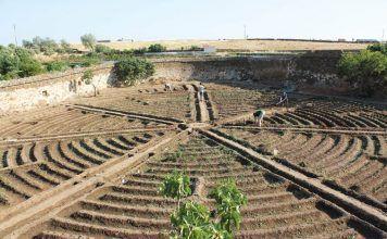 España primer país producción ecológica Espanya producció ecològica