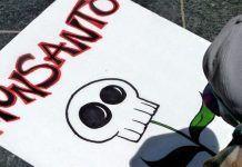 Monsanto químicos prohibidos Monsanto químics prohibits