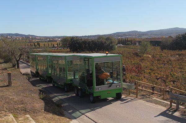 Tren-electrico 2