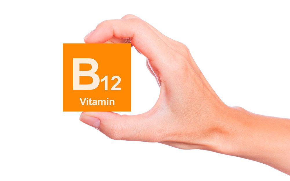 b12 bioeco junio