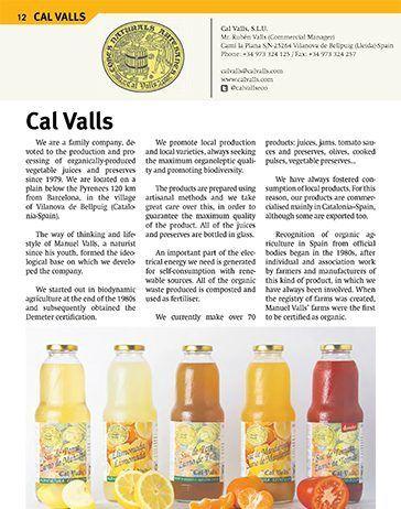 cal valls12 13