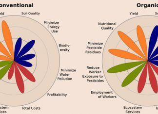 conventional vs organic