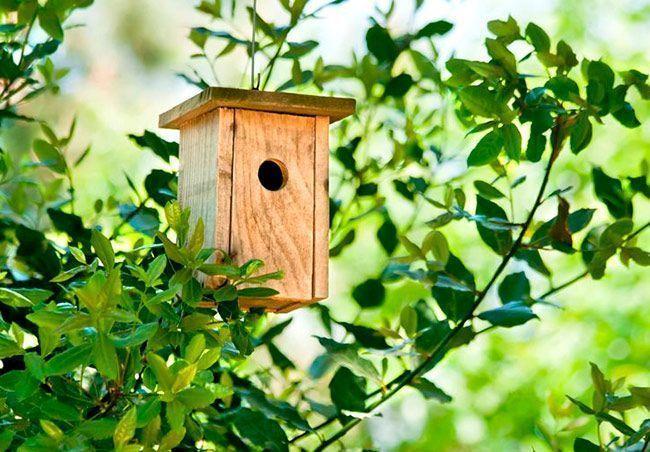 convenio para promover la jardiner a ecol gica en los