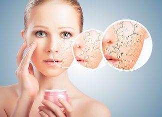 alimentar nuestra piel alimentar la nostra pell