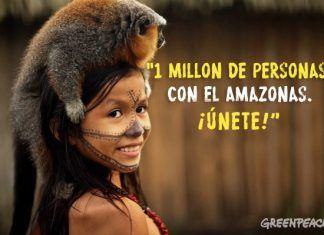 siemens amazonas