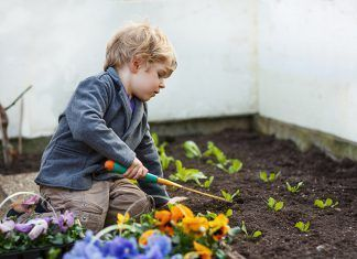 Agroecología y educación