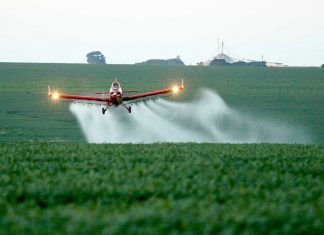 The organic movement calls to maintain and correctly implement the GMO legislation