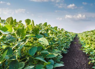 agricultura eco ue reglamento fracaso 08 12