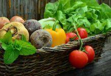 vegetables 752153 1 870x400