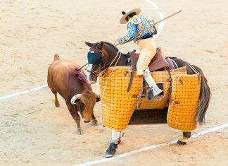 España, el país de las fiestas crueles con animales. Por Helena Escoda