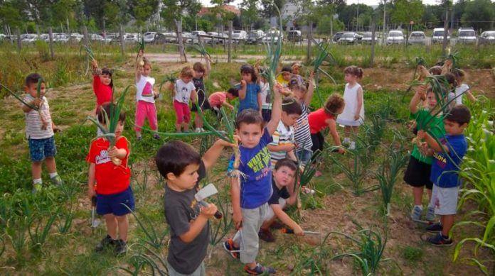 Horts Educatius Ecològics Huertos Educativos Ecológicos