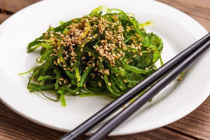 Algas verduras del mar algues verdures del mar