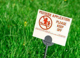 Los productos ecológicos y los residuos de pesticidas - els productes ecològics i els residus de pesticides