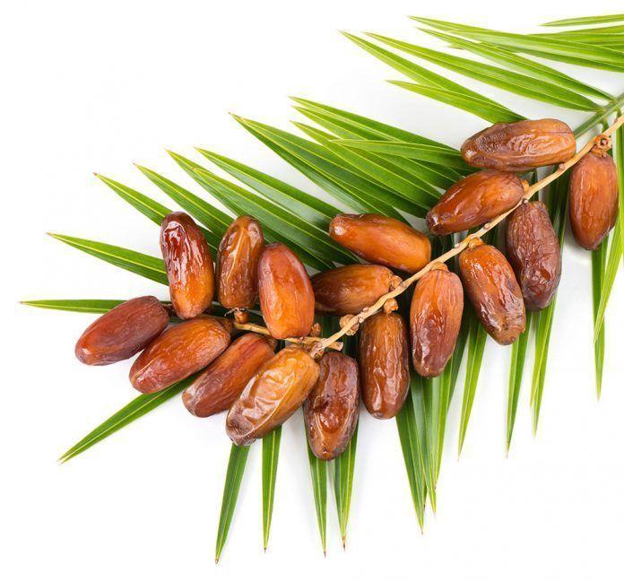 dátiles nutrientes dàtils nutrients