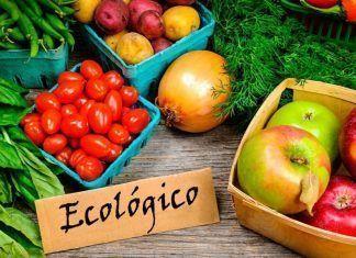 producción ecológica informe mapama producció ecològica