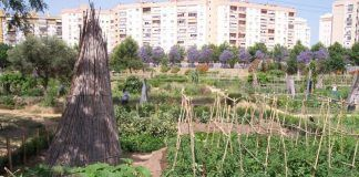 La apuesta por los huertos urbanos es cada vez mayor