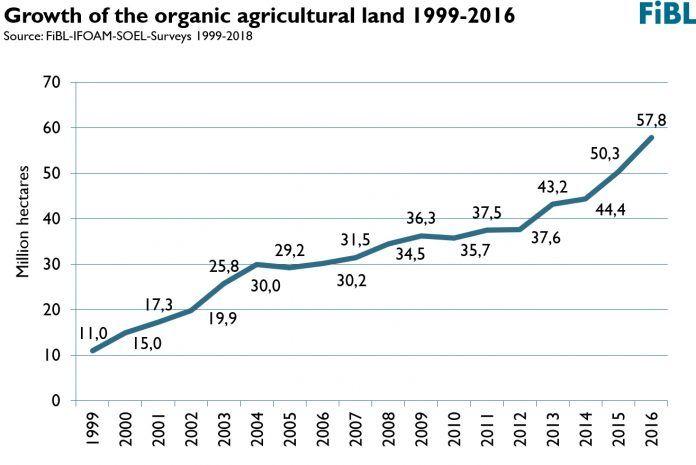 Crecimiento de la superfície dedicada a agricultura ecológica crecimiento sector ecológico imparable sector ecològic imparable A booming organic sector: more farmers, more land and a growing market organic sector