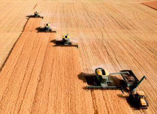 Mega fusión entre Bayer y Monsanto: la Comisión Europea da luz verde fusió entre bayer i monsanto