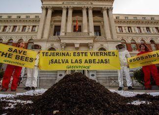 20 kg de abejas muertas en la puerta del Ministerio de Agricultura