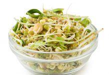 La vitalidad de los germinados vitalitat dels germinats