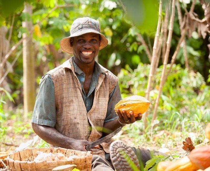 Los pequeños productores no ganan lo suficiente para alimentar a sus propias familias