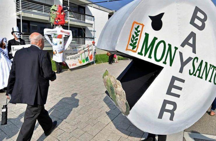 'Baysanto' ¡BASTA YA de monopolizar las semillas! baysanto monopolising seeds