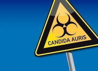 Cómo prevenir la candidiasis de forma natural Com prevenir la candidiasi de forma natural