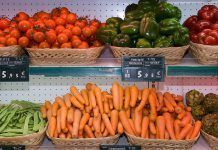 Cifras de récord en la agricultura ecológica mundial
