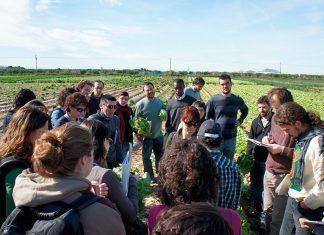 El Máster de Agricultura Ecológica de la Universidad de Barcelona cumple 20 años