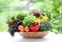 Nuevos datos científicos sobre los beneficios de la dieta ecológica Noves dades científiques sobre els beneficis de la dieta ecològica