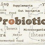 Cómo cuidar de nuestra salud intestinal en vacaciones probióticos salud intestinal probiòtics