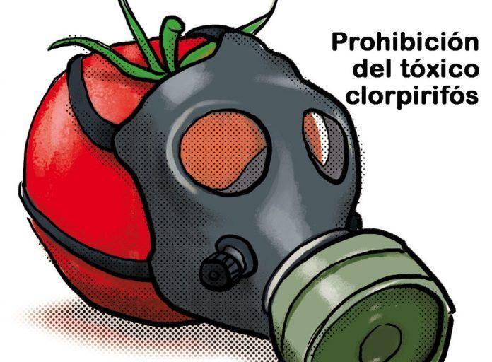 Clorpirifós, insecticida prohibido en EEUU, es el más detectado en nuestra comida