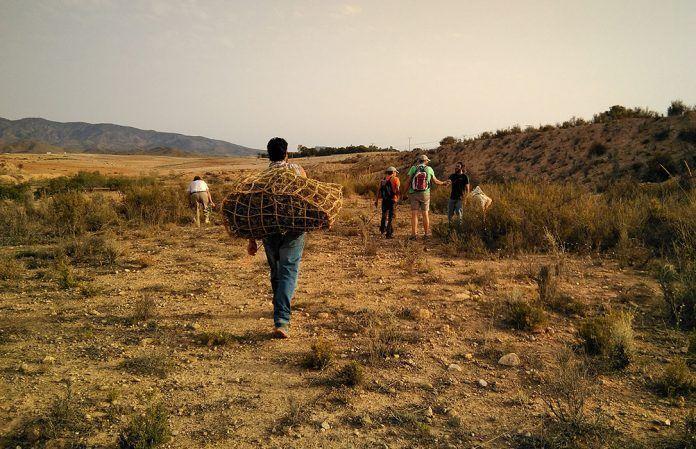 Recuperando saberes tradicionales para mejorar la cualificación de trabajadores/as agrícolas ecológicos