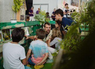 BioCultura Madrid 2018: continúan las buenas noticias en un sector que sigue creciendo