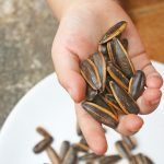 Comer pipas nutritiva merienda entre amigos menjar pipes
