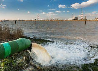 Pesticidas disruptores endocrinos en nuestros ríos disruptors endocrins contaminants hormonals rius