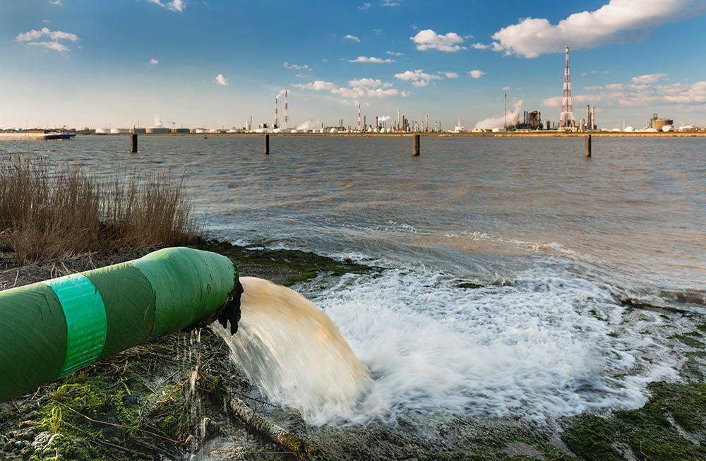 Pesticidas disruptores endocrinos en nuestros ríos