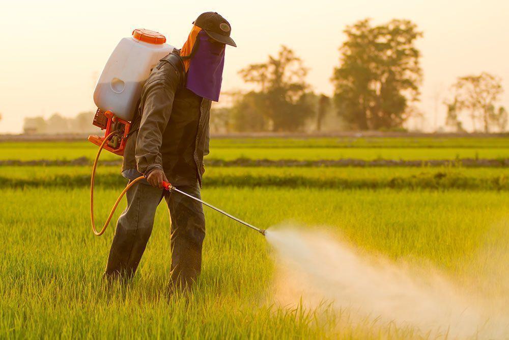 Pesticidas disruptores endocrinos en nuestros ríos agricultura convencional químicos