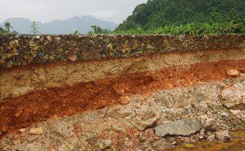 Vivificar el suelo: el camino a sistemas productivos más sostenibles vivificar el sòl