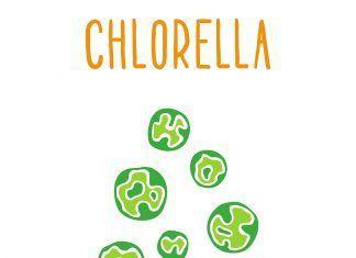 Chlorella, el alga desintoxicante desintoxicant