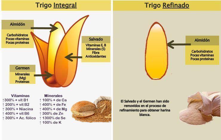 Cereales integrales o refinados