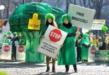 """free broccoli no patents on seeds (c) Thomas Einberger/argum Éxito de la coalición contra las patentes sobre semillas: revocación de la """"patente sobre brócoli cortado"""" de Baysanto"""