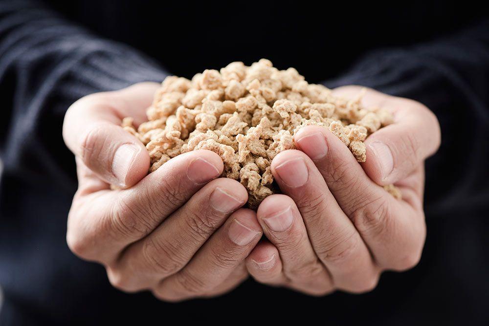 Soja texturizada, beneficios y usos como proteína vegetal