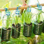 Bio jardinería comestible en balcones Bio jardineria comestible en balcons