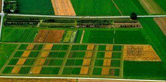 L'agricultura ecològica mitiga el canvi climàtic La agricultura ecológica mitiga el cambio climático Organic farming mitigates climate change
