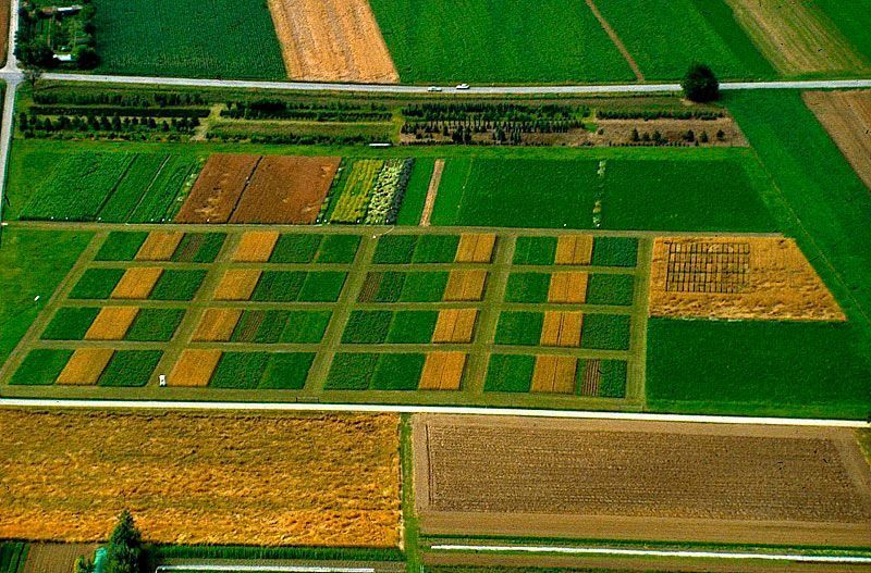 Organic farming mitigates climate change